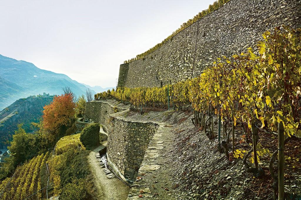 Ein Meisterwerk des Trockenmauerbaus ist der Weinberg Clos de Cochetta bei Sitten im Wallis.